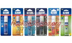 Ozium Air Sanitizer Outdoor Essence Scent 0.8oz.